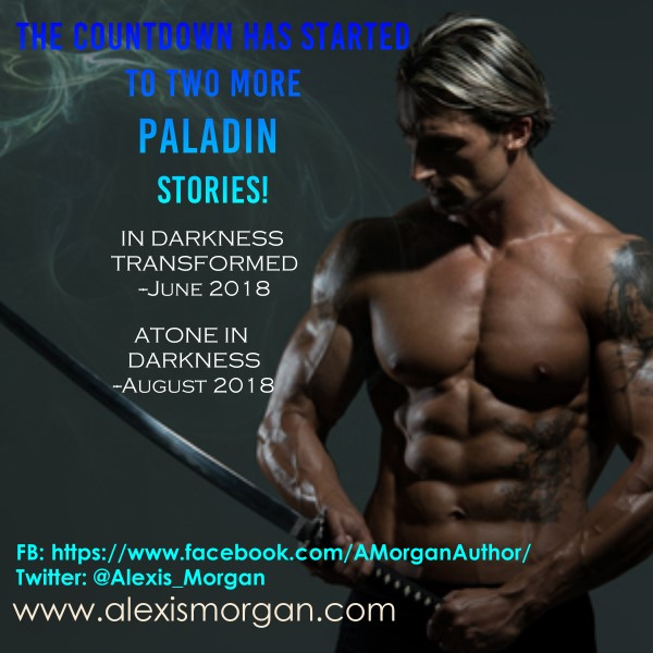 alexis morgan's paladin series